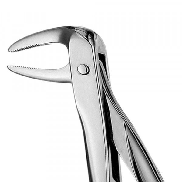 Zahnzange glänzend ohne Teflonschiene #74N europ., UK Wurzel, eng