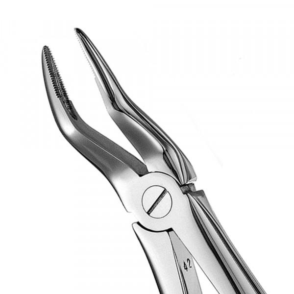 Zahnzange glänzend ohne Teflonschiene #51 europ., OK, Wurzel