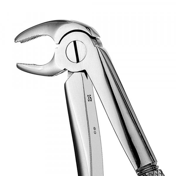 Zahnzange glänzend ohne Teflonschiene #22 europ., UK Molar